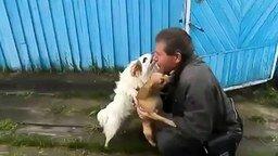 Собачья искренняя радость смотреть видео прикол - 1:12