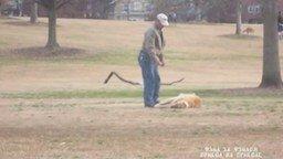 Смотреть Хозяин не может поднять своего пса