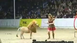 Пони-лев на арене цирка смотреть видео прикол - 3:33
