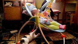 Кошка - няня смотреть видео прикол - 0:32