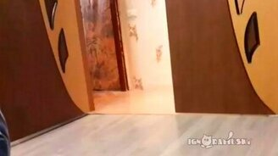 Смотреть Спонтанное кошачье безумие