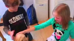 Смотреть Девочке дарят щенка