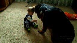 Малыш, овчарка и кость смотреть видео прикол - 0:58