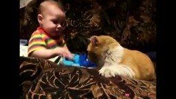 Кот заставляет спать ребёнка смотреть видео прикол - 0:36