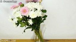 Смотреть Как красиво поставить маленький букет в большую вазу