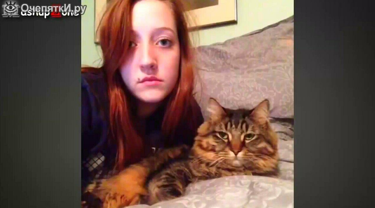кошек и собак смотреть