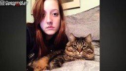Лучшие смешные кошки и собаки смотреть видео прикол - 5:43
