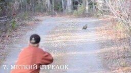 Смотреть Десять самых незадачливых охотников