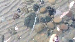 Прозрачнейший лёд на озере смотреть видео - 1:14