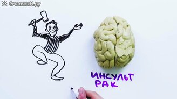 Наш мозг работает на 10 процентов? смотреть видео - 3:58