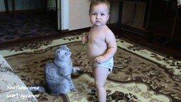 Смотреть Кот и малыш играют