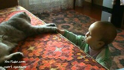 Кот Тихон и малышка смотреть видео прикол - 3:37