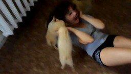 Смотреть Стая собак набросилась на девушку