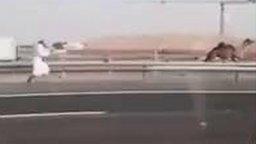 Смотреть Погоня за верблюдом