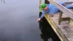 Смотреть Ловля рыбы голыми руками