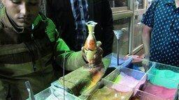 Смотреть Египетский сувенир на память