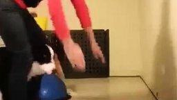 Смотреть Собака-йог: стойка на передних лапах