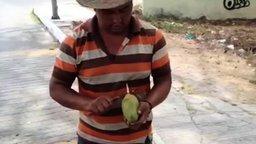Смотреть Цветок из манго