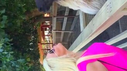 Лама против блондинки смотреть видео прикол - 0:16