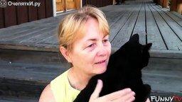 Смотреть Кошки, любящие обниматься