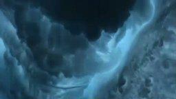 Смотреть Дельфины в океане
