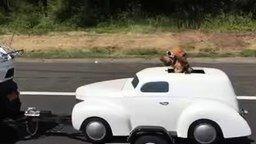 Собака заядлого автолюбителя смотреть видео прикол - 0:24