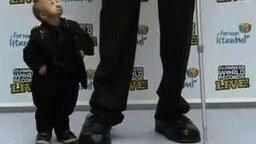 Смотреть Самый высокий и самый маленький в мире