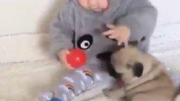 Малыш и щенок смотреть видео прикол - 0:15