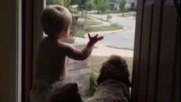 Смотреть Малыш и пёс встречают папу и хозяина
