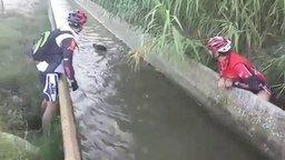Смотреть Добрые велосипедисты спасают кабана