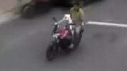 Смотреть Пёс катает хозяина на мотоцикле