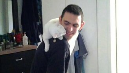 Белоснежный ласковый котяра смотреть видео прикол - 1:30