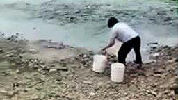 Смотреть Кормление рыбы в пруду