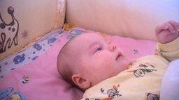 Малышка изображает доисторическую птицу смотреть видео прикол - 0:09