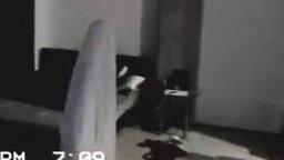 Атаковал призрака стулом смотреть видео прикол - 0:06