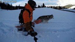 Смотреть Зимняя прогулка с собакой
