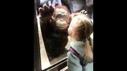 Смотреть Дети общаются со зверьми в зоопарке