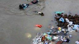 Смотреть Собака спасает щенка в наводнение