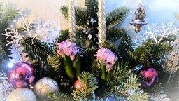 Смотреть Белочка у новогодней ёлки