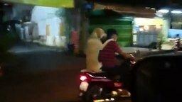 Смотреть Тайский пёс с зонтиком в зубах