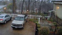Впечатляющий удар молнии в дерево смотреть видео - 0:55
