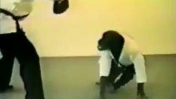 Шимпанзе-каратистка смотреть видео прикол - 0:25