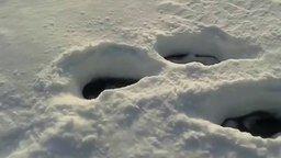 Смотреть Загадочный ледяной шар в снежном домике