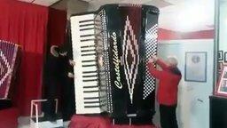 Огромный аккордеон смотреть видео - 0:39