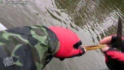 Смотреть Рыбак спасает цаплю