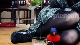 Попугай-поскакун смотреть видео прикол - 0:04
