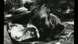 Первый в мире ролик с кошкой смотреть видео прикол - 0:44