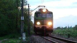 Смотреть Олень против поезда
