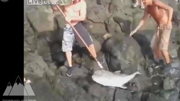 Оригинальные рыбалки смотреть видео прикол - 8:28