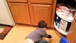 Дети и звери против тостера смотреть видео прикол - 1:06